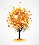 Fall Yoga and Guided Imagery in theClassroom